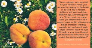 MTMTE Peaches